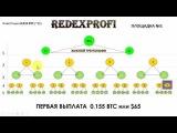 RedeX   золотой треугольник - Получай прибыль в три раза больше !