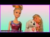 Барби мультик Подарок для Челси Мультик с игрушками Игры для девочек Куклы Барби