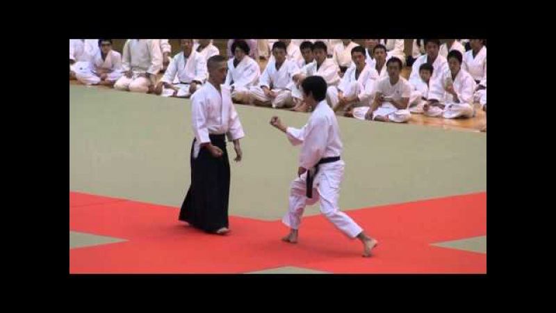 第60回演武会 養神館 千野先生 -2015 Demo Yoshinkan Chino sensei