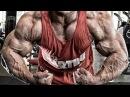 Bodybuilding Motivation - WITHOUT LIMITS