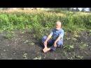 Володарский Борис Алтайский старец упражнения от Видящих