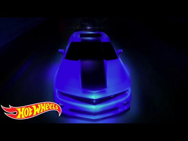 World's Best Driver Movie | Hot Wheels World's Best Driver | Hot Wheels