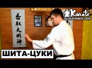 Удар в печень шито цуки киокушинкай каратэ A shot to the liver shita tsuki Kyokushinkai karate elfh d gtxtym ibnj werb rbjre