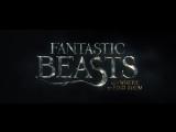 Фантастические звери и места их обитания. Первый тизер фильма.