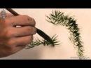 Обучение рисованию деревьев при помощи живописи у-син Часть 6 как рисовать листву деревьев