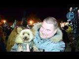 Дед Мороз открыл в Севастополе елку