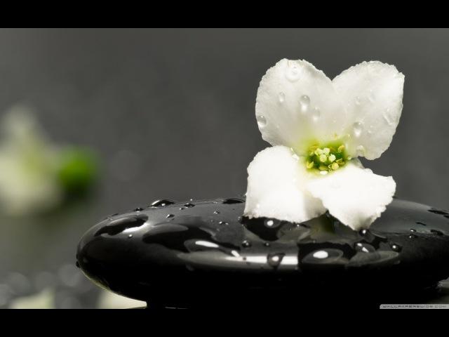 Secrets Of Zen (Japanese Chill Out)