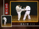 Ашихара каратэ часть 2