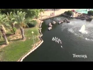 Недвижимость Испании , Costa Blanca - Torrevieja