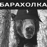berloga_group