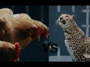Реклама Мерседес-Бенц - Курица Пародия от Ягуар