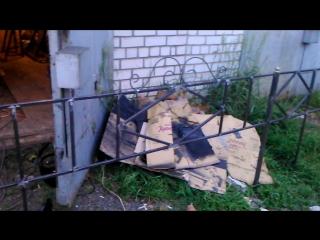ограда 10 на 2.8