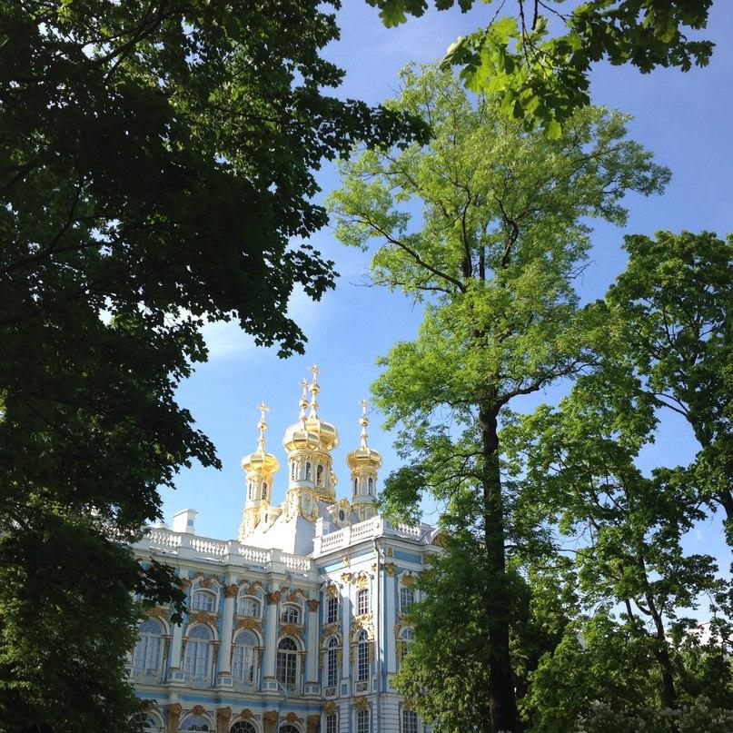 Светлана Белоусова | Санкт-Петербург