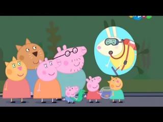 Свинка Пеппа мультик на русском 4 Сезон 31 Аквариум - Развивающие мультфильмы для детей