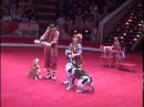 DogShow Clowns with dogs Moscow Circus Клоуны с собачками