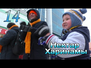 Нектар харинамы эпизод 14 (28.11.15)/ The Nectar of Harinam, Russia ep.14