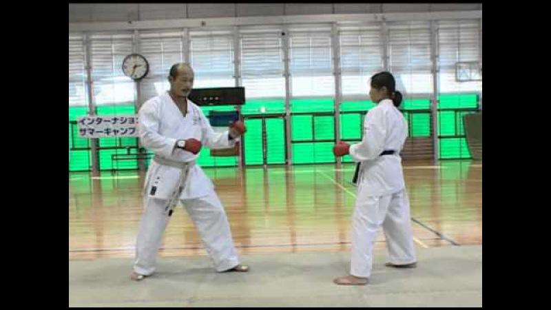 Seiji nishimura - wado ryu kumite technique 8