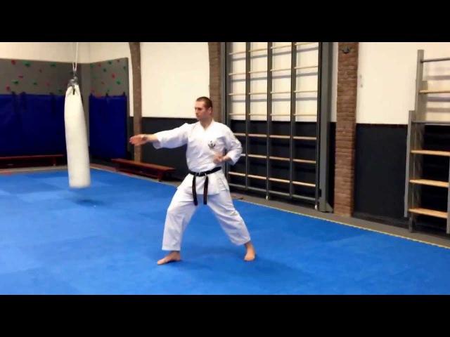 Wadokai Karate Kata: Pinan Sandan