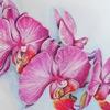 Орхидея, Товары для цветов. Харьков