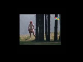 Самое Смешное Видео: Красная Шапочка и Сурок