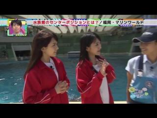 HKT48 no Goboten ep60 от 9 августа 2015 г.