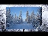 Прогулка по зимнему лесу и волшебная  музыка для вас, друзья!