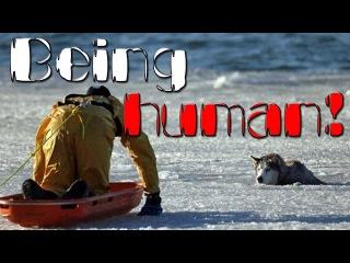 Being human! || Быть человеком!
