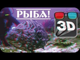 Совсем маленький 3d анаглиф ролик с потрясающим стерео эффектом! Анаглифные очки red/cyan.