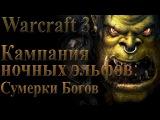 Прохождение warcraft 3 Кампания Ночных эльфов Сумерки богов