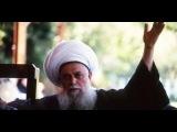 Мауляна Шейх Назим аль-Хаккани.