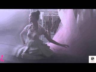 Paul Pele - Homeland (Original Mix) Veritas Recordings [Promo Video]