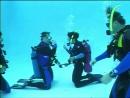 PADI Open Water Diver Глава 2