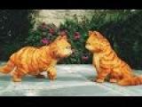 Гарфилд 2  История двух кошечек