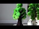 Выращивание дерева из кристаллов - Ускоренная съемка.