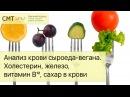 Анализ крови сыроеда вегана Холестерин железо витамин B12 сахар в крови