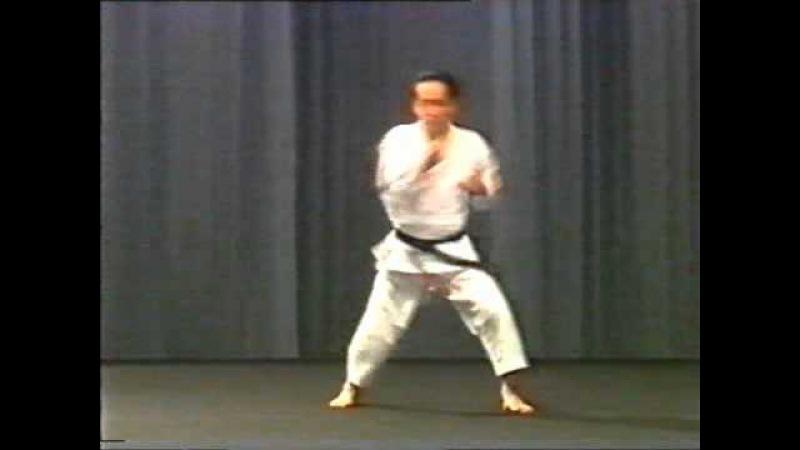 Asai-ha Shotokan-ryu Kata - Kakuyoku Nidan 鶴翼二段