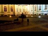 МОСКВА-НЕВА cover Алёна Санкт-Петербург Эрмитаж Уличные Музыканты