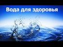 Адекватное питание. Ваше тело просит воды. Лекция 3 - Замалеева Г. А.