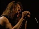 Steelheart - She's Gone (Acoustic Version)