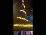 путин - хуйло-гирлянда на Рождественской ёлке в Сиднее .