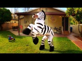 Dope Zebra - Rhett &amp Link (Official Original Video)