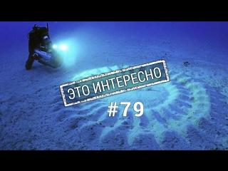 Это интересно: Подводные круги  Тайна раскрыта