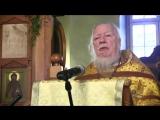 Проповедь на неделю 28-ю по Пятидесятнице (память апостола Андрея Первозванного) 13 декабря 2015 г.