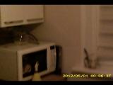 Пример записи видео с Камеры - очки
