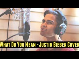 What Do You Mean by Justin Bieber  Alex Aiono Cover