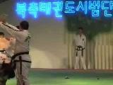 Показательное выступление сборной КНДР по таэквондо ИТФ в Сеуле