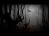 Страшно интересно - Ведьмин лес