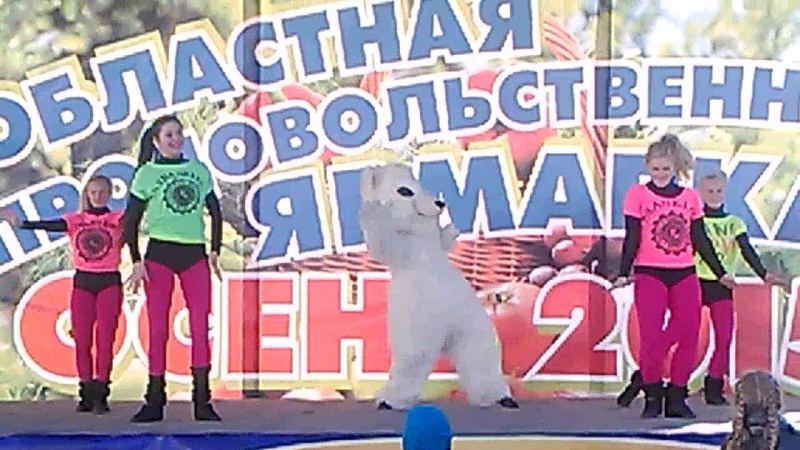 Белый медведь в танце