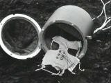 Первые на луне. Испытания с поросенком