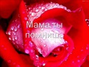 настя петрик-мама и папа (текст песни)